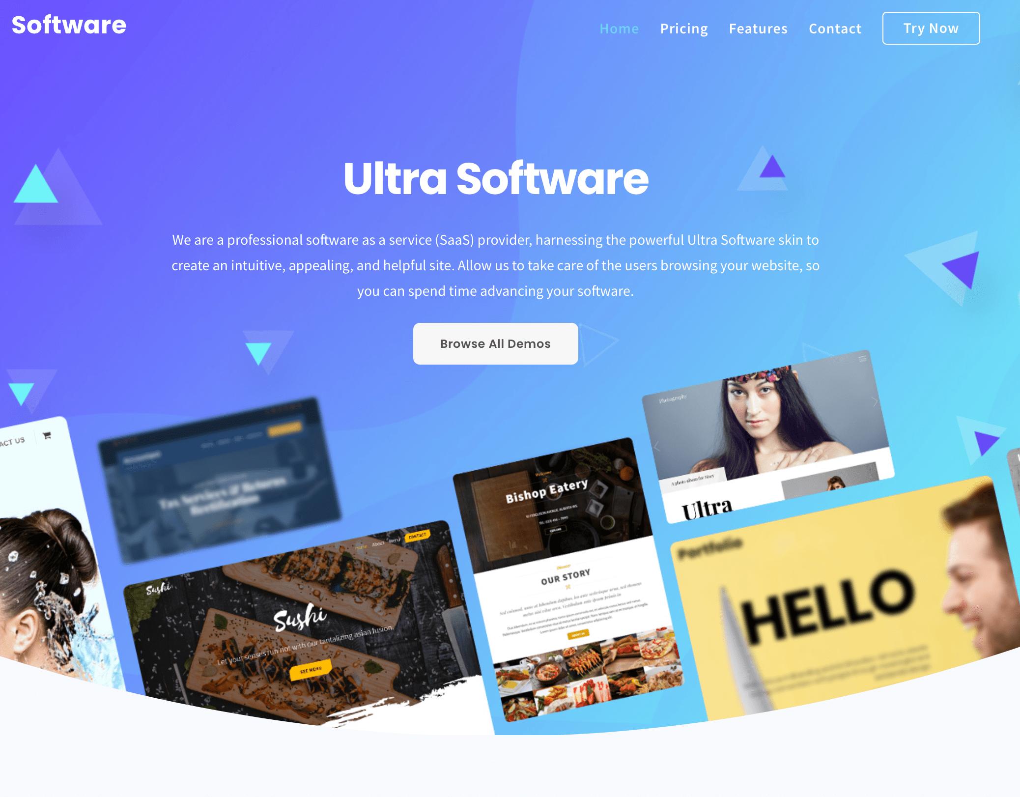 Software Developer web design